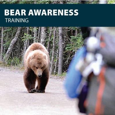 bear awareness training certification