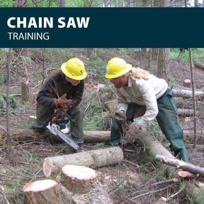 chainsaw training certification