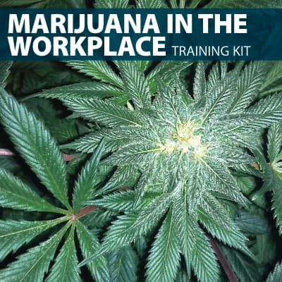 Marijuana in the Workplace Training Kit