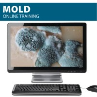 Online Mold Training from Hard Hat Training