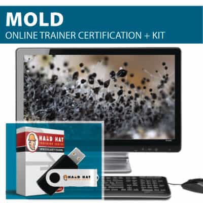 Mold Train the Trainer Certification Online Course